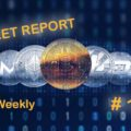 Weekly market report # 1 on the cryptocurrency sector